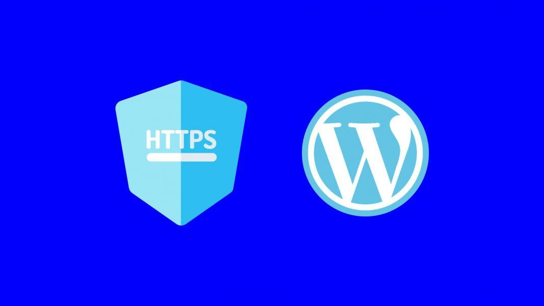 WordPress 5.7: Όλες οι καινούριες λειτουργίες της νέας έκδοσης